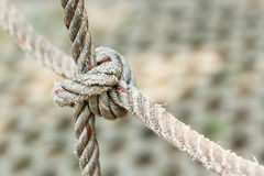 Old fishing boat rope with a Tied Knot Royalty Free Stock Photography