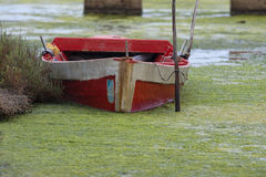 An old fishing boat in swamp in Sardinia, Italy Stock Photography