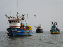 Old fishing boats, Peru. Stock Images