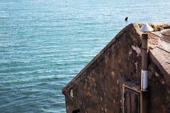 Old fishing house on the Adriatic Sea coast in lagoon. Croatia Harbor royalty free stock image