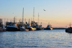 Old fishing trawlers at sunset.  stock photos