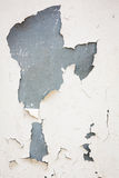 Old flaky white paint peeling off Royalty Free Stock Image