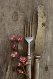 Old flatware Royalty Free Stock Photography
