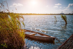 Old flooded boat in the reeds. Sunny day at the lake Stock Photo