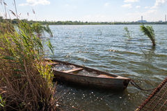 Old flooded boat in the reeds. Stock Photos