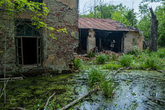 Old flooded overgrown ruined abandoned forsaken building among bog Royalty Free Stock Photography