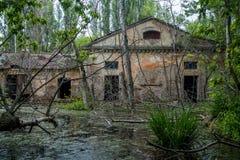 Old flooded overgrown ruined abandoned forsaken industrial building among bog after the flood disaster Stock Image
