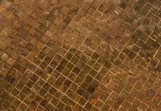 The old floor tiles. Stock Photography
