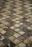 Old Floor Tiles Stock Image
