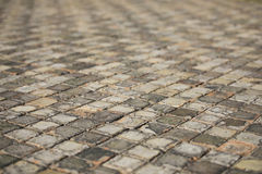 Old Floor Tiles Stock Images