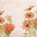 Old floral background Royalty Free Stock Image