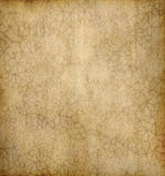 Old floral paper background Stock Photos
