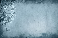 Old and flower paper texture background Stock Photos