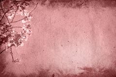 Old and flower paper texture background Stock Photography