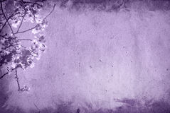 Old and flower paper texture background Royalty Free Stock Photography