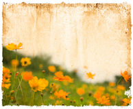 Old flower paper textures Royalty Free Stock Photography