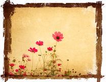 Old flower paper textures Stock Image