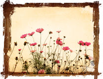Old flower paper textures Royalty Free Stock Images