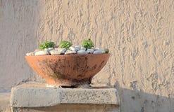 Old flower pot Stock Images