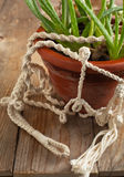 Old flower pot in macrame pot holders. Selective focus Stock Photo