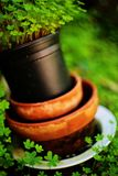 Old flowerpots Royalty Free Stock Images