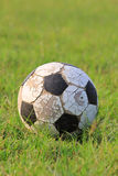 Old football. On the grass Stock Photo
