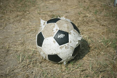 Old football on the grass Stock Image