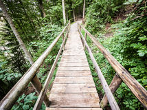 Old footbridge Royalty Free Stock Photography