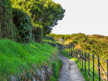 Old footpath at the cliffs Stock Photo