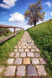 Old footpath Stock Images