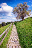 Old footpath Royalty Free Stock Photo