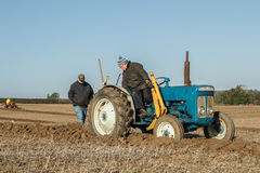 Old ford fergusen tractor at ploughing match Royalty Free Stock Image