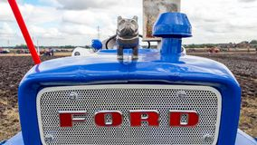 Old ford 4000 tractor ploughing. Old vintage blue ford 4000 tractors grill and bull dog mascot Stock Images