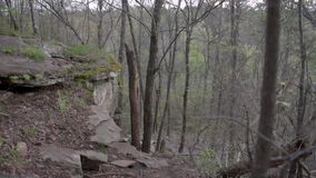 Old forest path with old leaves and moss on the ground. Early spring time. stock video footage
