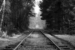Old forest railroad. Old railroad going trough a forest in black and white Royalty Free Stock Photo