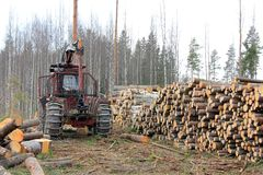 Old Forestry Tractor at Early Spring Logging Site. Old forestry tractor and stacks of logs at early spring forest logging site in Finland royalty free stock photos
