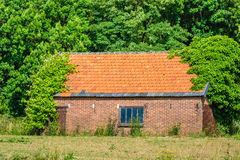 Old forgotten barn hidden among the trees and bushes Stock Photos