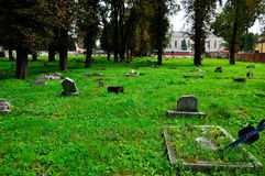 The old forgotten cemetery of the abandoned graves Royalty Free Stock Image