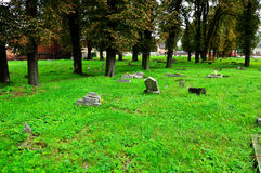The old forgotten cemetery of the abandoned graves Royalty Free Stock Photography