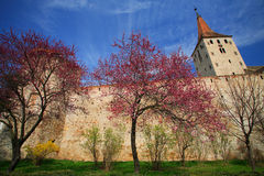 Old fortress Royalty Free Stock Photo