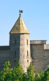 Old fortress. The city of Pskov. Russia Royalty Free Stock Photos