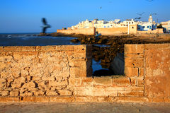 Old Fortress of Essaouira Stock Image