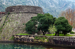 Old fortress of Kotor Stock Photography