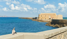 Old fortress with pigeons kissing at foreground. Two pigeons kissing in warm sunlight with Koules Fortress at background against blue sky, Heraklion, Crete Stock Photo