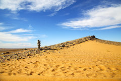 Old fossil in  the desert  footstep    stone sky Stock Image