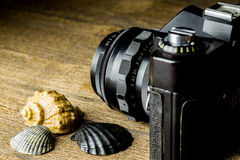 Old fotocamera with sea shells on the brown wooden table Stock Photo