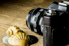 Old fotocamera with sea shells on the brown wooden table Stock Image