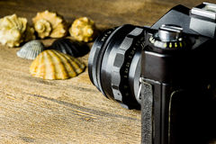 Old fotocamera with sea shells on the brown wooden table Royalty Free Stock Images