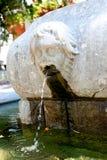Old fountain in Buzet, Croatia Royalty Free Stock Photo