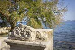 Old fountain with an ornament and a Tamarix Tree. A tamarisk stands right on the shore of the Adriatic in Orebic, Croatia. The tamarisk is a typical tree of Royalty Free Stock Images